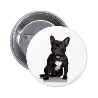 French Bulldog Pinback Buttons