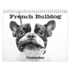 French Bulldog Calendar 2017 Black White Custom at Zazzle