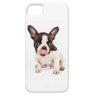 French bulldog case