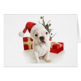French bulldog Christmas greetings card