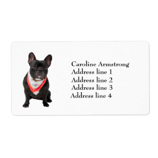 French Bulldog cute photo custom address labels