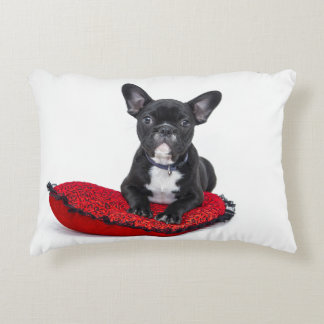 French Bulldog Design Accent Pillow