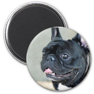 French Bulldog dog 2 Inch Round Magnet