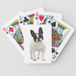 French Bulldog dog beautiful photo portrait, gift Deck Of Cards