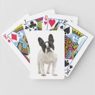 French Bulldog dog beautiful photo portrait, gift Deck Of Cards