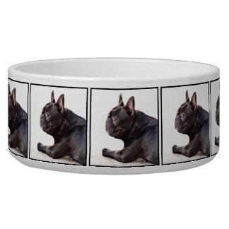French Bulldog dog bowl