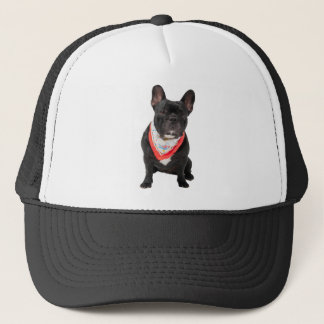 French Bulldog, dog cute beautiful photo, gift Trucker Hat