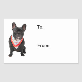 French Bulldog,  dog cute beautiful photo to, from Sticker