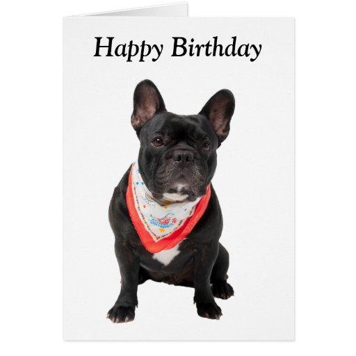 French Bulldog, dog cute photo happy birthday card