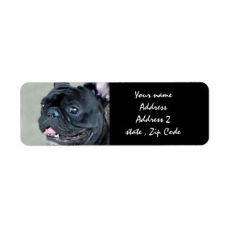 French Bulldog dog Label