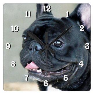 French Bulldog dog Square Wall Clock