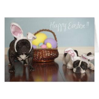 French Bulldog Easter Card! Card