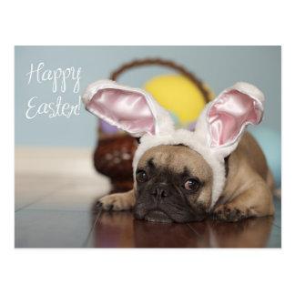 French Bulldog Easter Card! Postcard