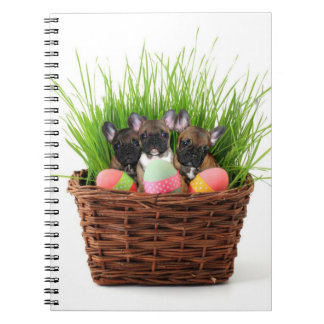 French Bulldog Easter spiral notebook