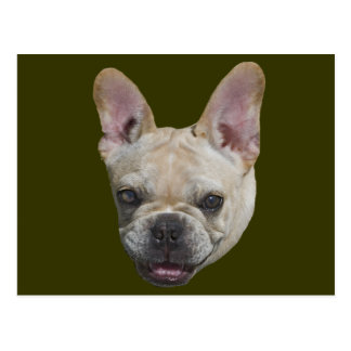 French Bulldog Gift Postcard
