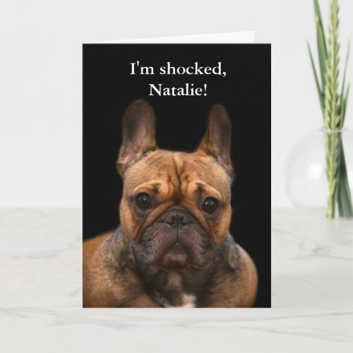 French Bulldog Happy Birthday Humor Card