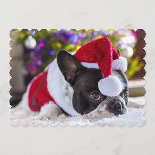 72fd1152ac9 French Bulldog In Santa Hat Under Christmas Tree Holiday Card