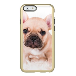 French bulldog. incipio feather shine iPhone 6 case