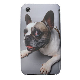 French Bulldog iPhone 3 Case-Mate Case