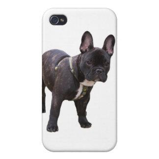 French bulldog iphone 4 case, gift idea