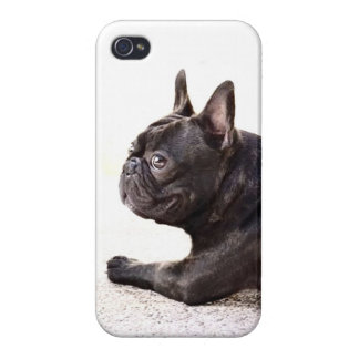 French Bulldog iPhone 4 Cover