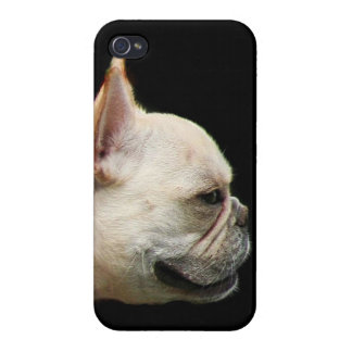 French bulldog iPhone 4/4S cover