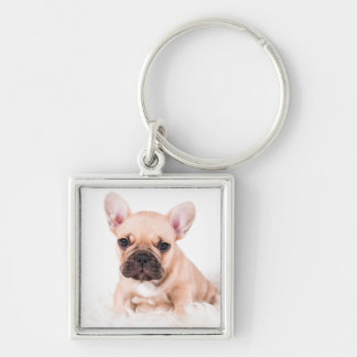 French bulldog. keychain