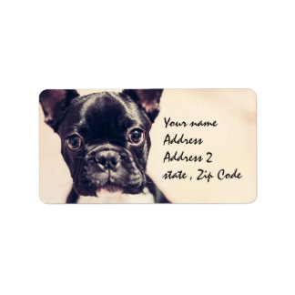 French Bulldog Label