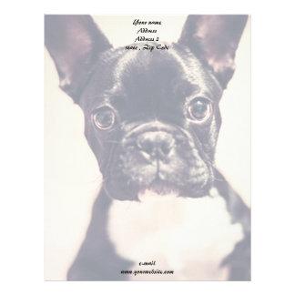 French Bulldog Letterhead