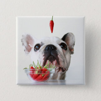 French Bulldog Looking At A Red Pepper Button