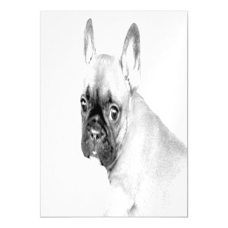 French Bulldog Magnetic Card