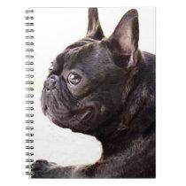French Bulldog Notebook