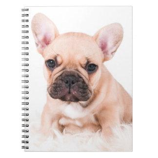 French bulldog. note book