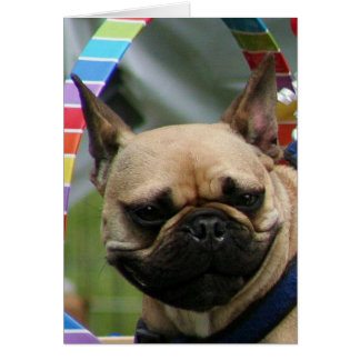 French bulldog Notecard