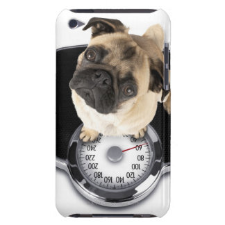 French bulldog on scales looking up at camera iPod touch Case-Mate case