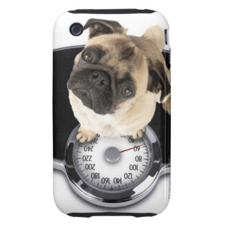 French bulldog on scales looking up at camera tough iPhone 3 covers