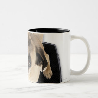 French bulldog on scales looking up at camera Two-Tone coffee mug