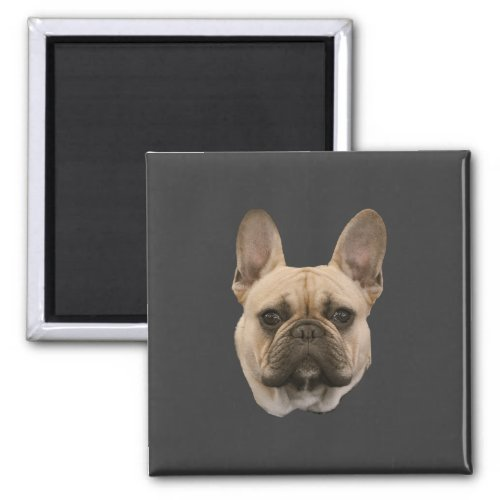 French Bulldog Photo Cute Face Picture Magnet