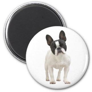 French Bulldog photo fridge magnet gift idea