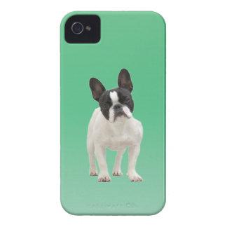 French Bulldog photo iPhone 4 case mate, gift idea