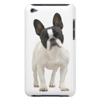 French Bulldog photo iPod Touch 4G case, gift idea iPod Touch Case-Mate Case