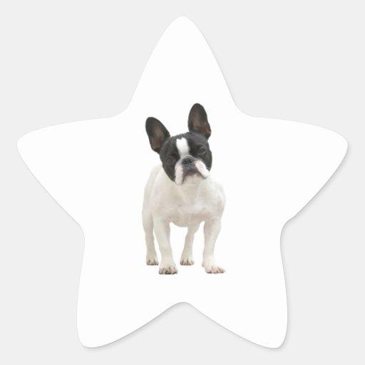 French Bulldog photo star stickers, gift idea Star Sticker
