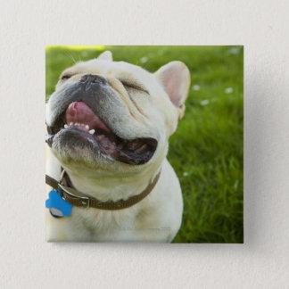 French Bulldog Pinback Button