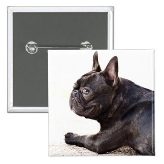 French Bulldog Pinback Button
