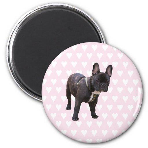 French Bulldog pink & white hearts fridge magnet