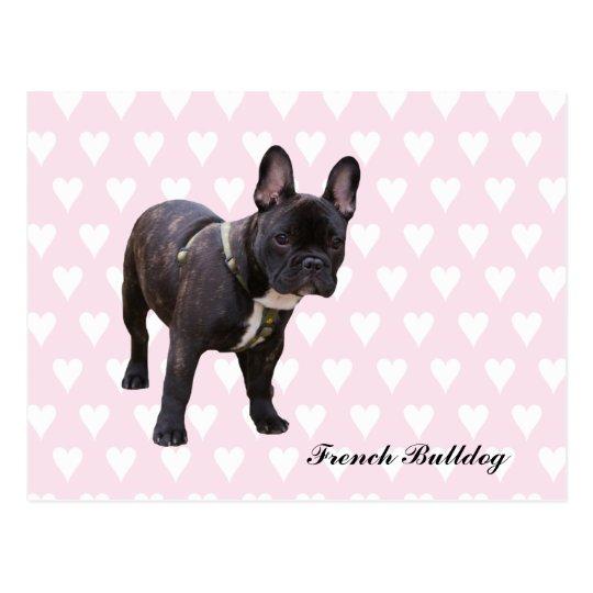 French Bulldog pink & white hearts postcard