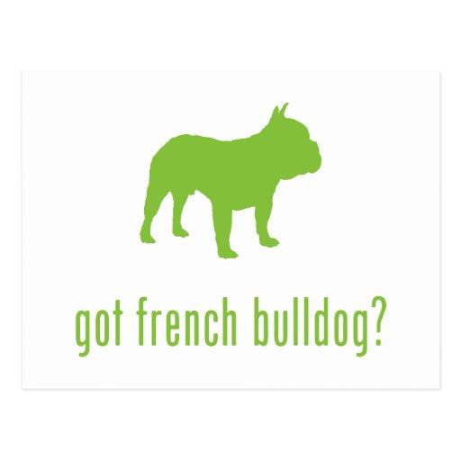 French Bulldog Post Card