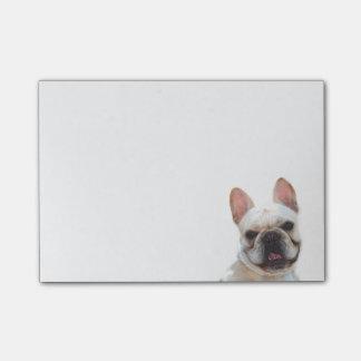 French Bulldog post it notes