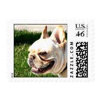 French Bulldog Stamp