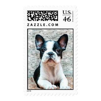 French Bulldog postage